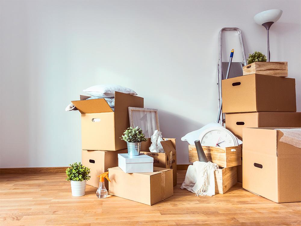 plischka internationale spedition frankfurt oder gmbh wohnungsumz ge wertvolle tipps f r. Black Bedroom Furniture Sets. Home Design Ideas
